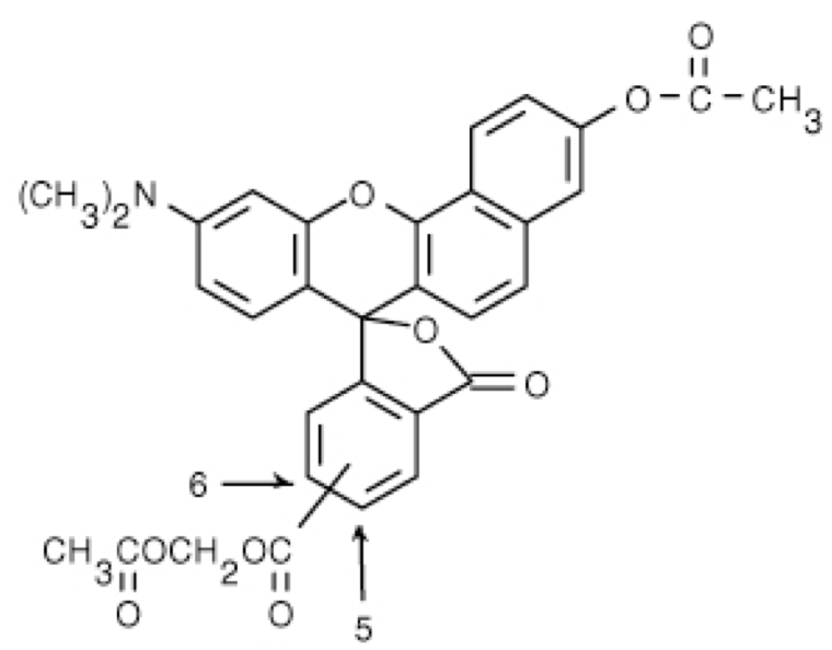 Snarf-1 AM [5-(and-6)-Carboxy SNARF-1, Acetoxymethyl Ester, Acetate]