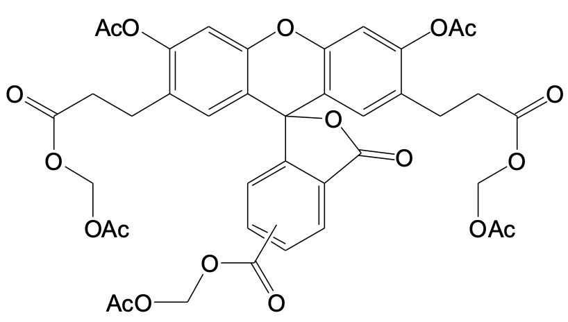 BCECF, AM  [2',7'-bis-(2-carboxyethyl)-5-(and-6)-carboxyfluorescein, acetoxymethyl ester]